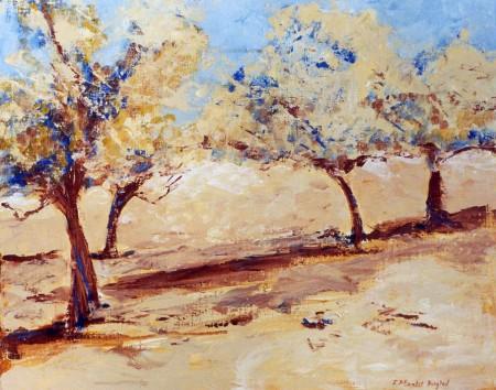 Paysages et nature