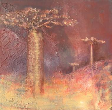 baobab, paysage